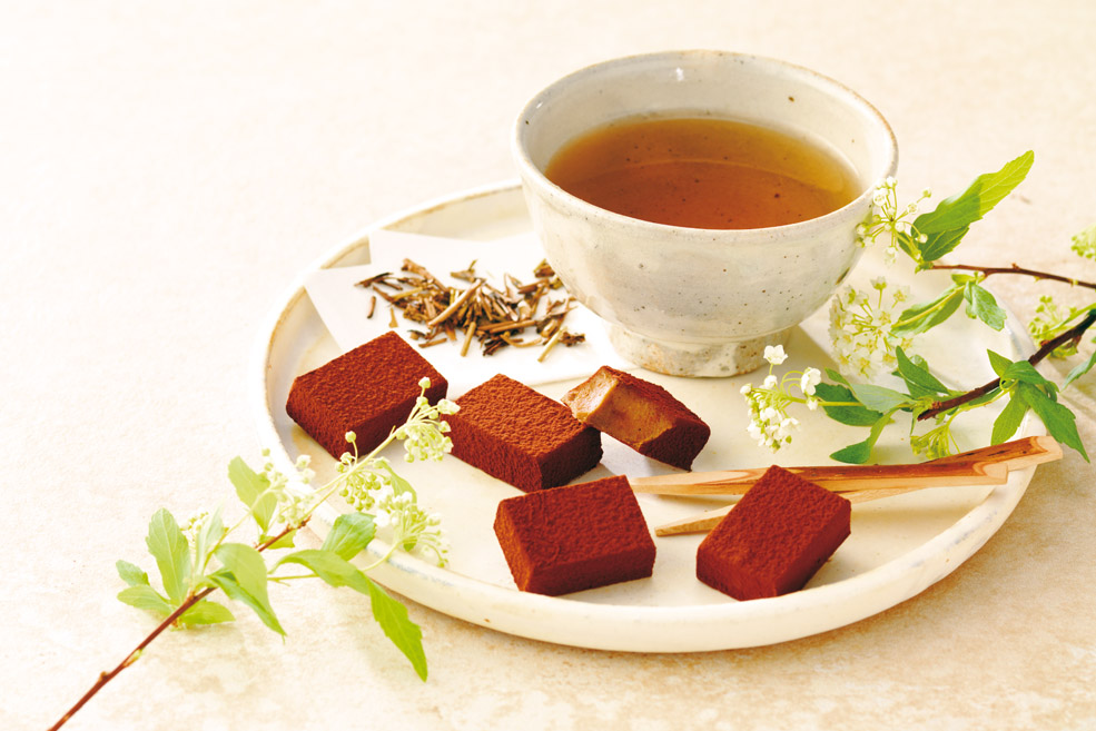 Нама шоколад «Ходзича»
