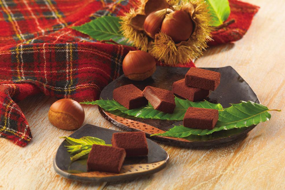 Нама-шоколад «Каштан»
